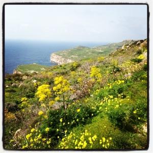 Malta in Springtime